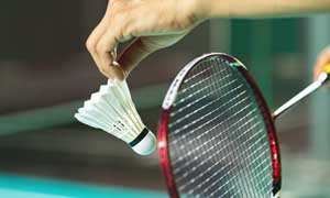 Badminton Inclus