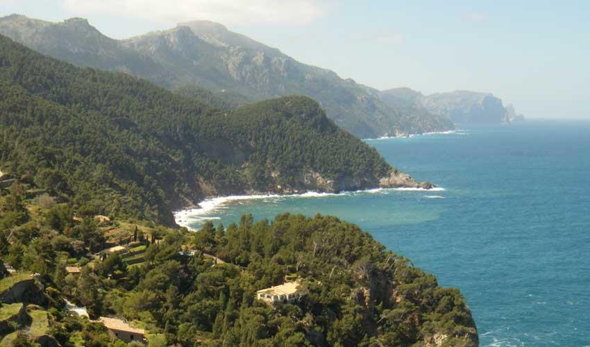 Clubs Marmara Majorque végétation