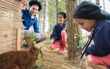 Center Parcs : animaux de la forêt
