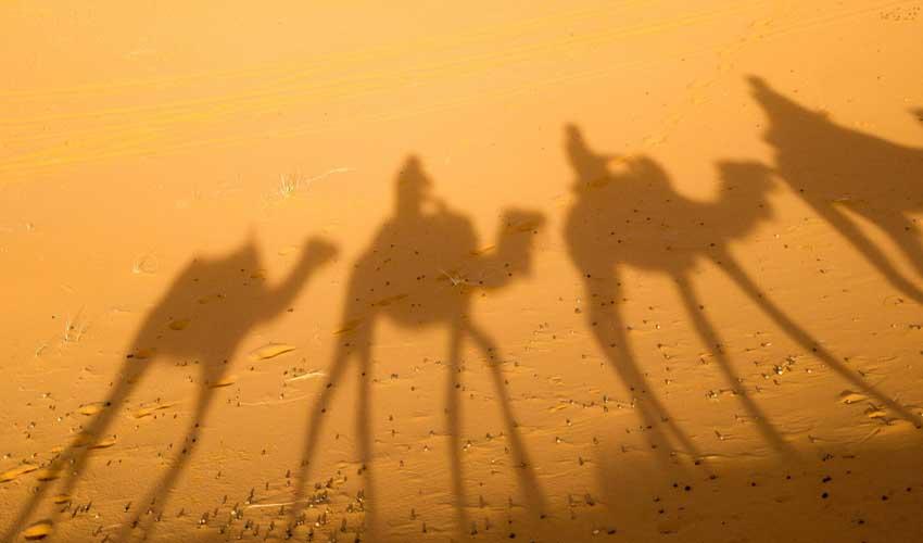 Thomas Cook : club Jet tours au Maroc pour faire du chameau