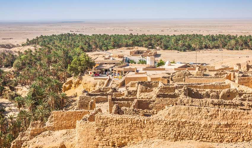 Thomas Cook : les oasis en Tunisie