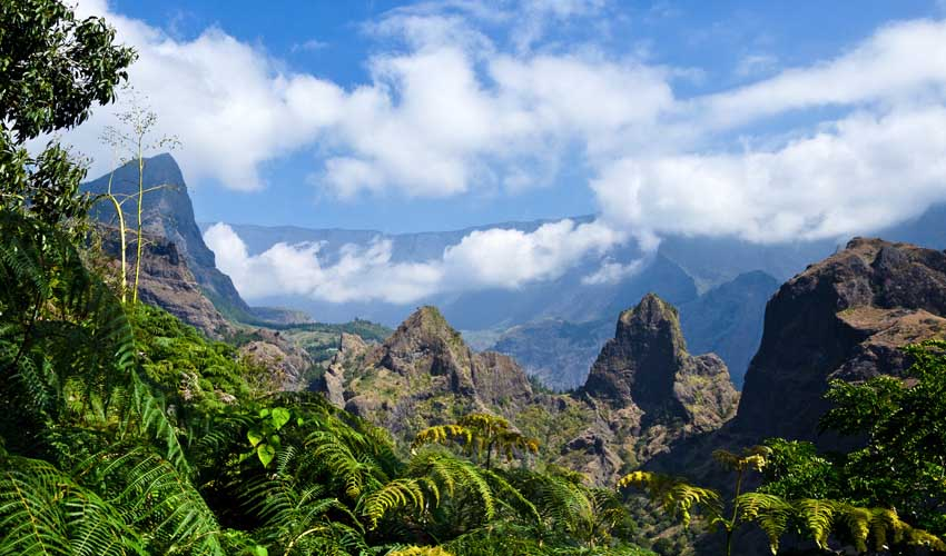 Thomas à l'Île de la Réunion