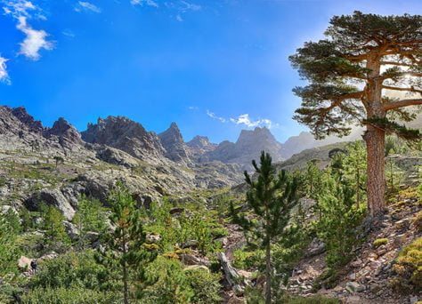 Les plus belles randonnées de Corse adaptées aux familles
