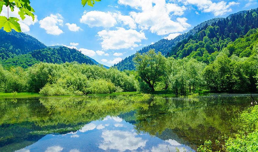 Le parc national de Biogradska Gora et ses paysages envoûtants