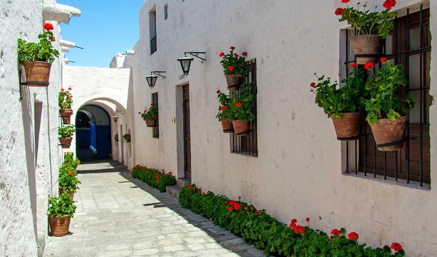 Circuit Fram au Perou : visite d'Arequipa