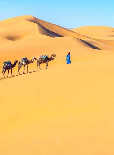 Excursion dans le désert d'Agadir