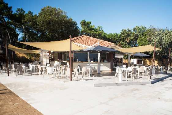 Club vacances Odalys-Vacances - Paradu Resort : bar