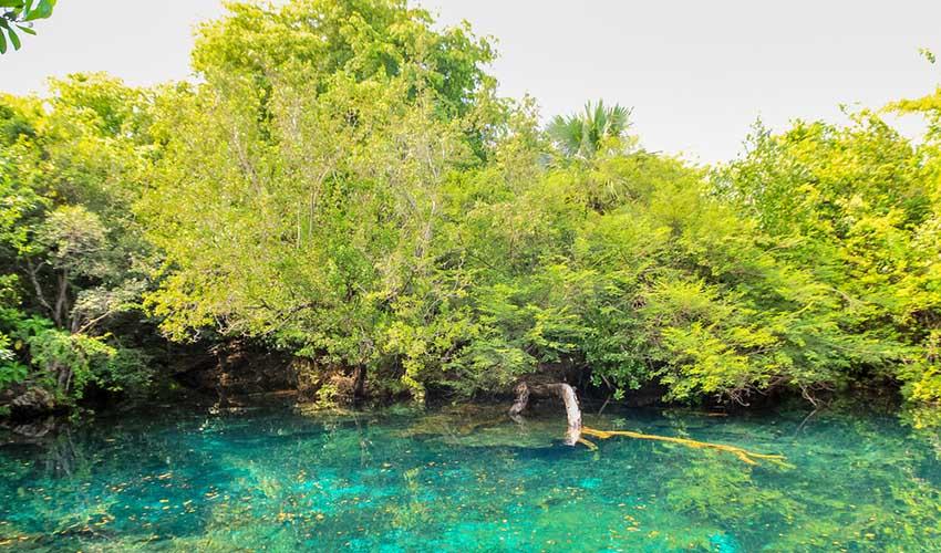 Punta Cana Indigenous Eyes Park