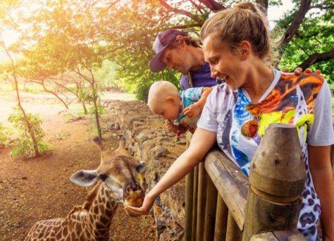 Réservation d'activités sur Expedia : vacances en famille plus fun