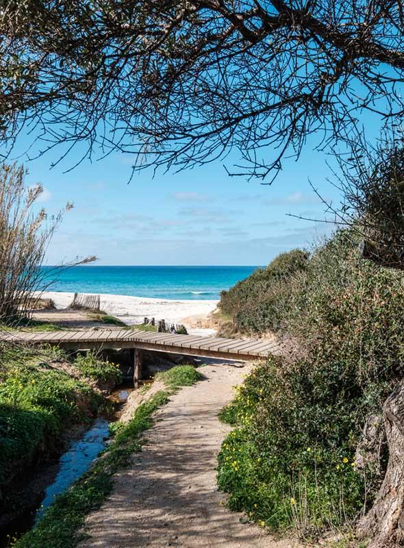 Chemin menant à la plage de Bodri en Corse