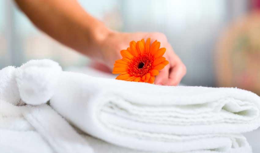 nemea residence room services payants