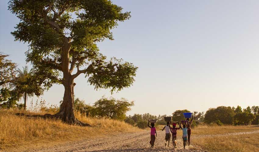 senegal pas manquer village serere visite local côte de mbour