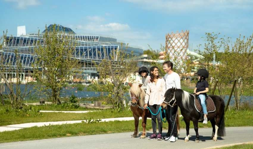 center parcs differences villages activites en famille poney