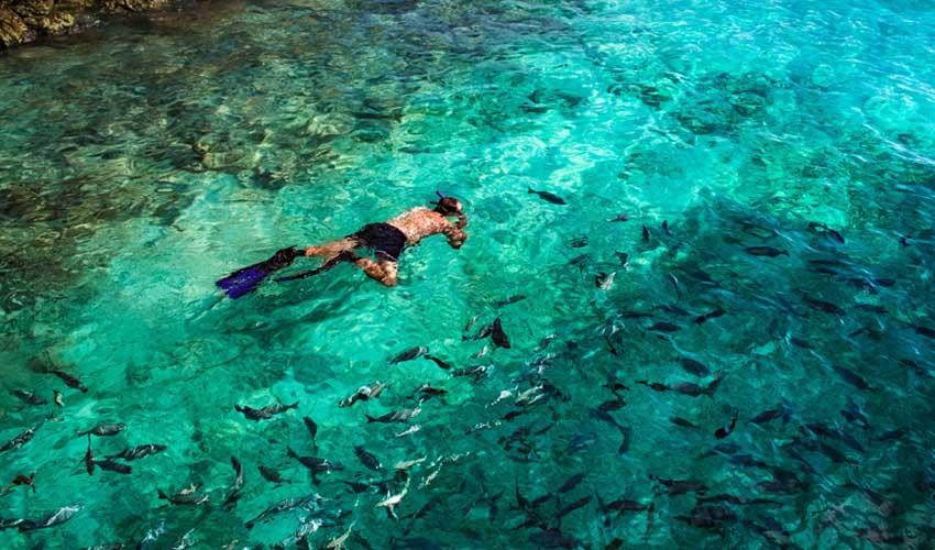 maldives pas cher snorkelling