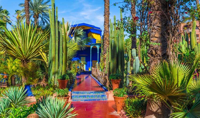maroc pas manquer jardin majorelle memorial ysl et musee berbere