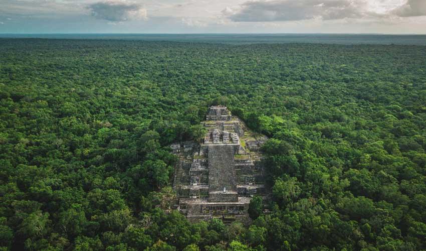 mexique pas manquer calakmul cité perdue ruines et jungle tropicale vue aerienne