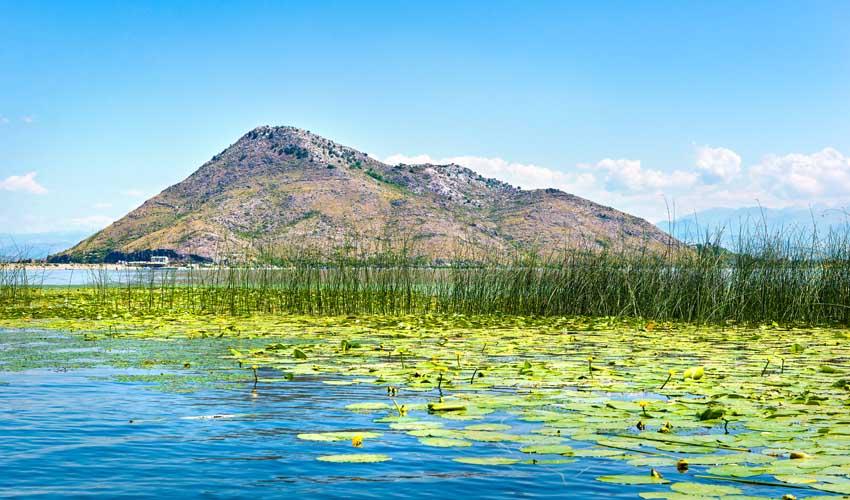 montenegro a faire lac de shkodra