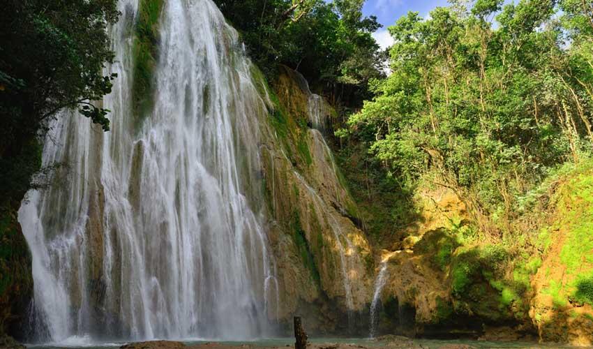 republique dominicaine a faire jungle samana cascade el limon