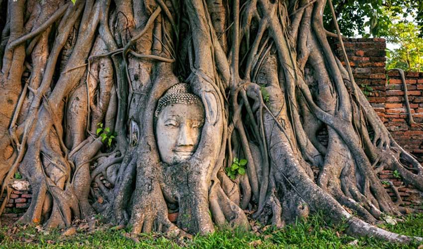 thailande pas manquer temples ayutthaya wat mahathat