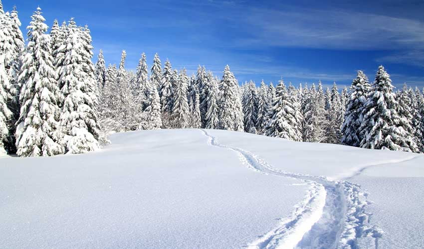 Montagnes enneigées dans le Jura, France
