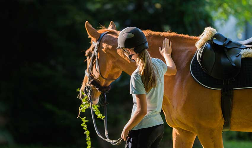 soleil vacances sejours equitation