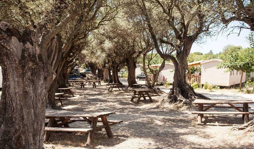 homair visiter la provence camping la baie des anges exterieur avec mobil home et tables de pique nique