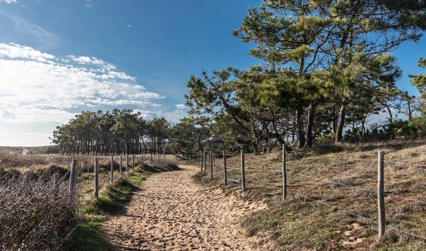 vacances lagrange residences bord de mer bretignolles sur mer plage