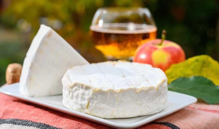 huttopia vacances campagne et terroir camping calvados normandie gastronomie camembert cidre pommes