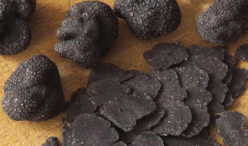 huttopia vacances campagne et terroir camping sarlat gastronomie perigord truffe degustation