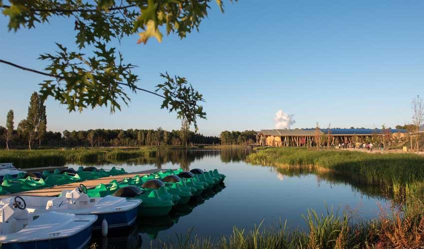 vacances nature center parcs domaines vacances famille foret lac