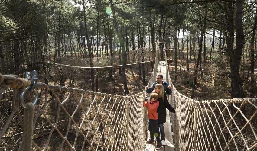vacances nature center parcs le bois aux daims activites exterieures famille foret animaux