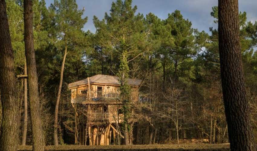 vacances nature center parcs le bois aux daims maison dans les arbres location famille