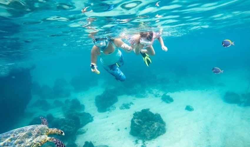 Essayez le snorkeling !
