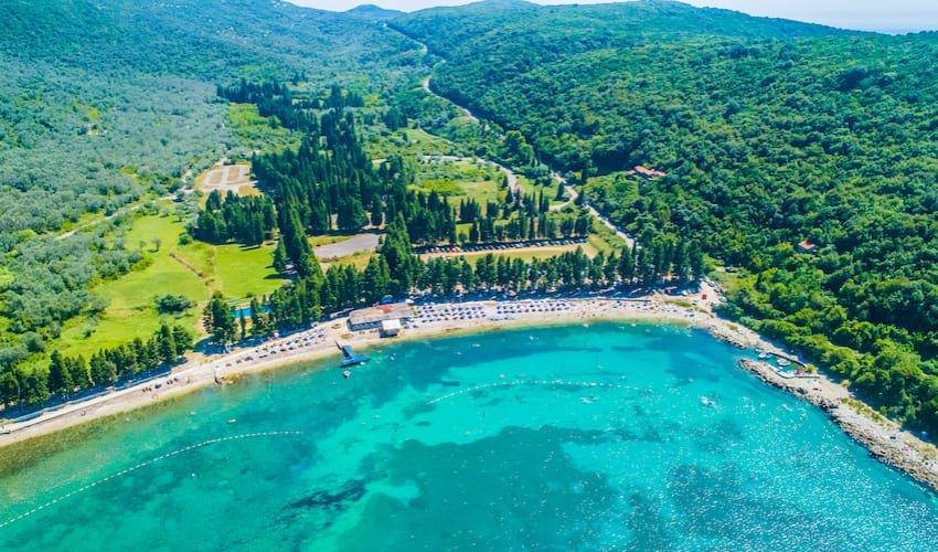 L'oliveraie de la baie de Valdanos